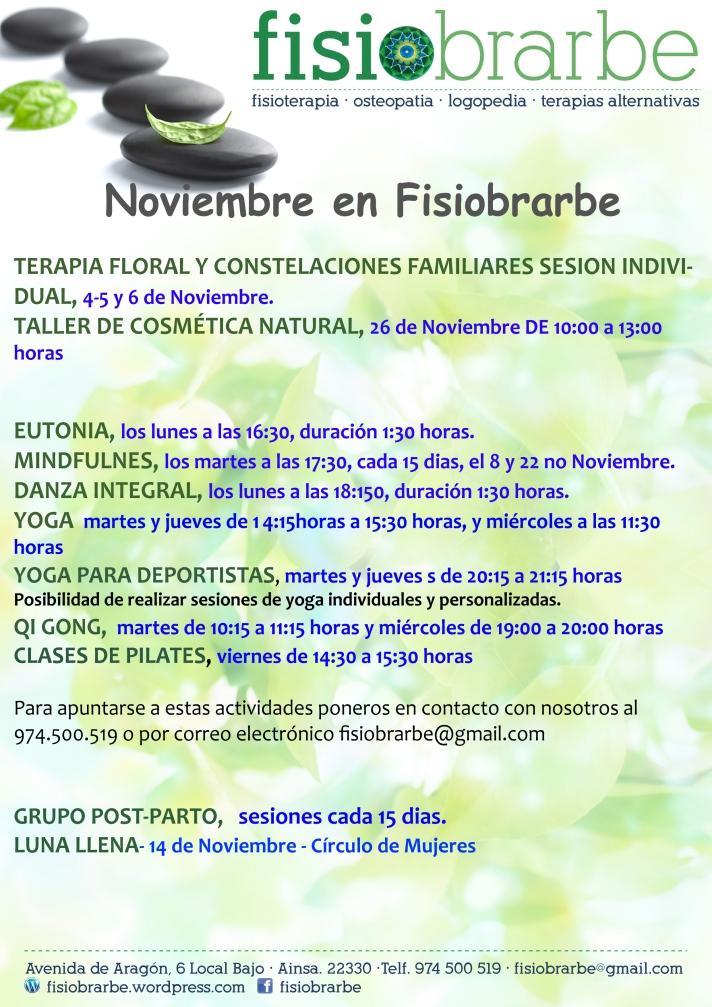noviembre-2016-fisiobrarbe